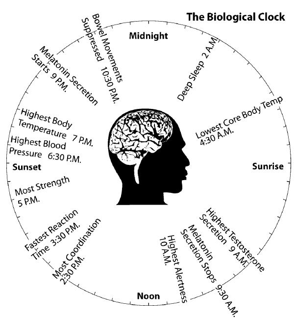 Sleeping Clock